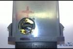 Daewoo Lanos - Podsvietenie tlačítok hmlovky_018